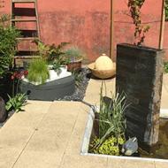 vand-i-haven
