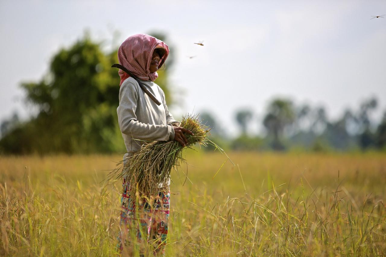 Foto-2_Cambodja_FOTO-Preben-Hjorth
