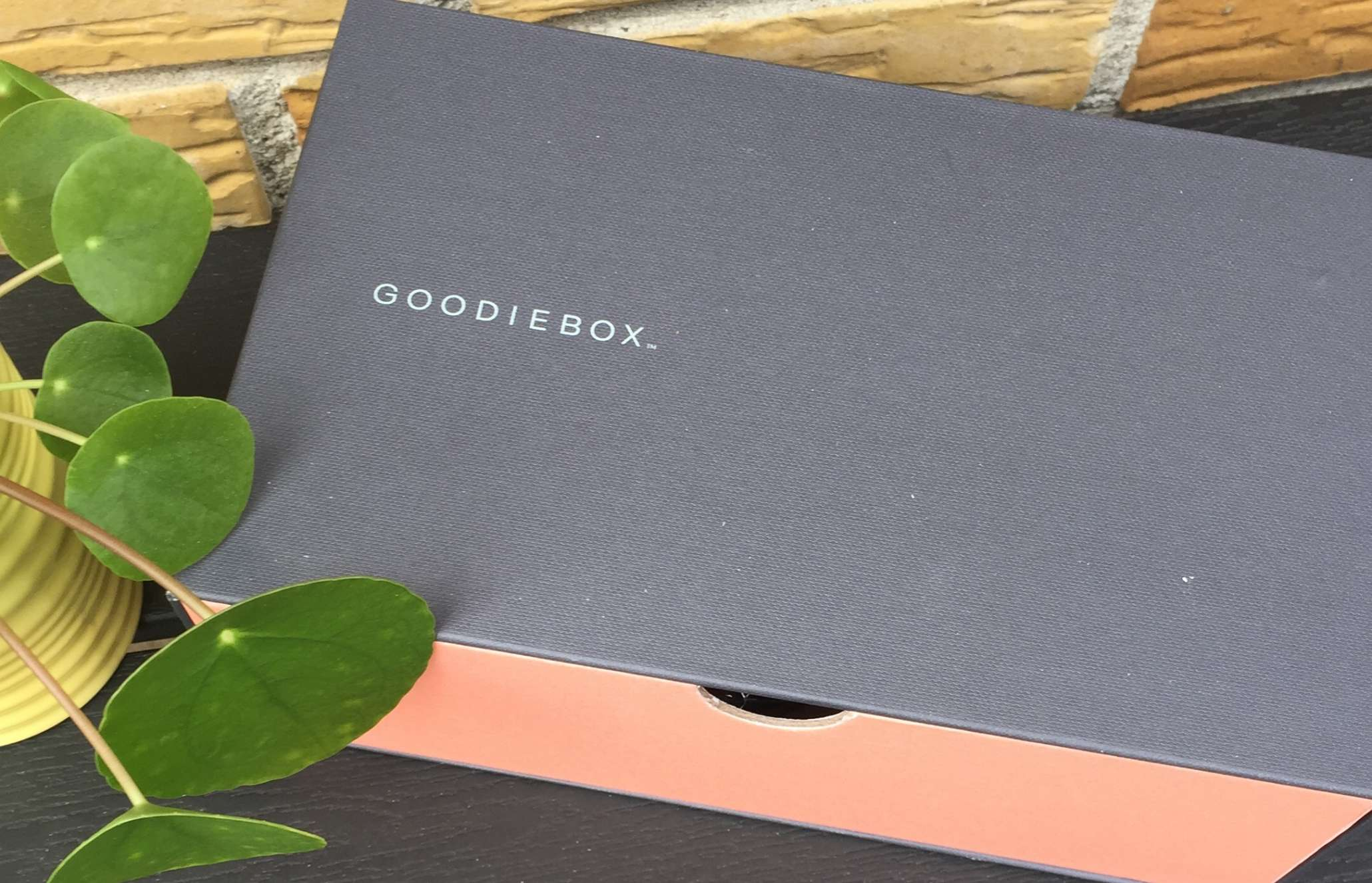 Goodiebox, Goodiebox DK, Piz Buin, Nails inc., Aloe After Sun, Zenz, The Wes Surf, Dr. Botanicals, Olie, Hårbørste, Solcreme, Solbeskyttelse, Anmeldelse, Krummeskrummelurer, Krummes Krummelurer,