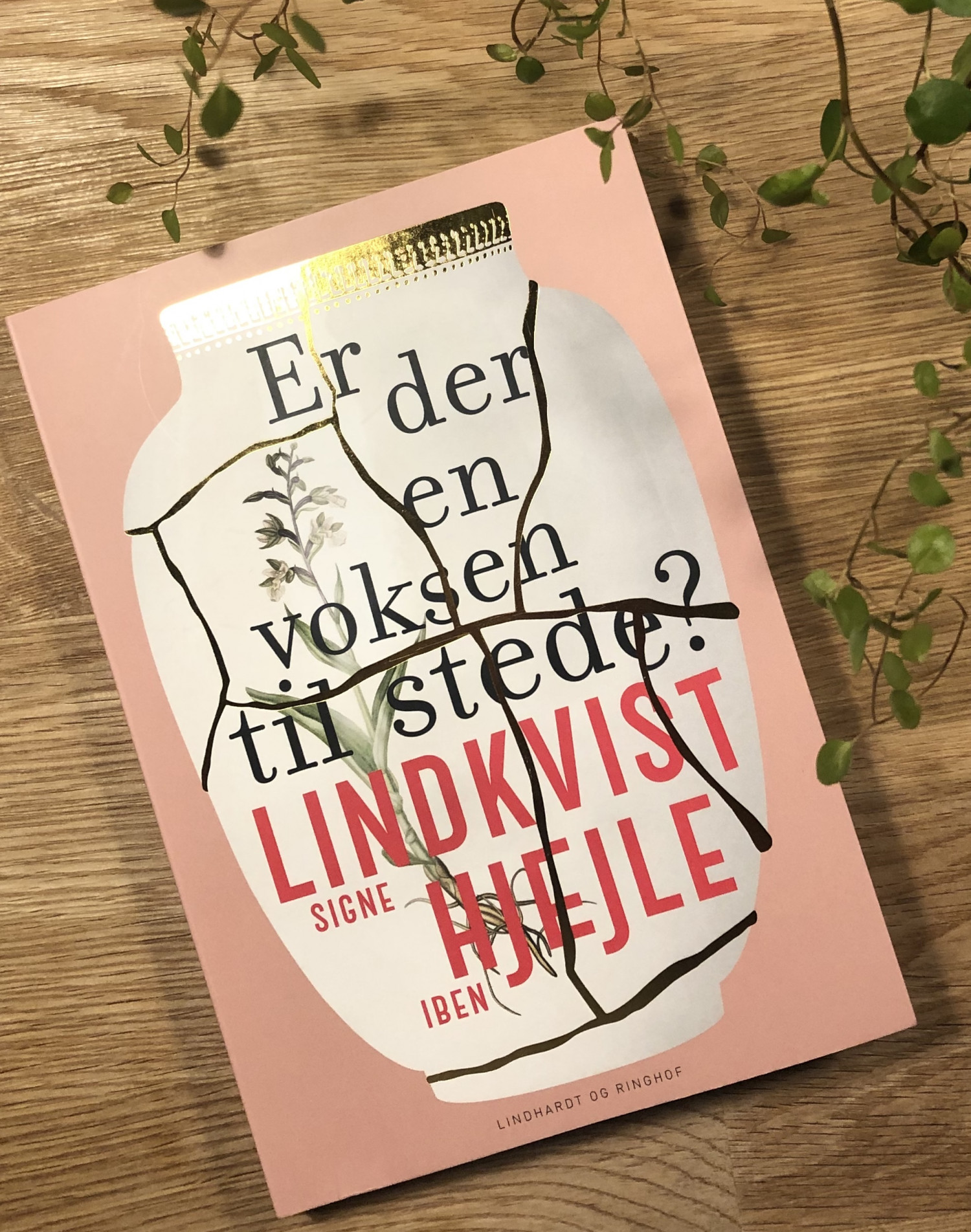 Er der en voksen tilstede, Signe Lindkvist og Iben Hjejle, anmeldelse af Er der en voksen tilstede?, Lindhardt og Ringhof, anmeldelse, boganmeldelse, bookreview, krummeskrummelurer, Krummes Krummelurer, krummeskrummelurer.dk, anmeldereksemplar,