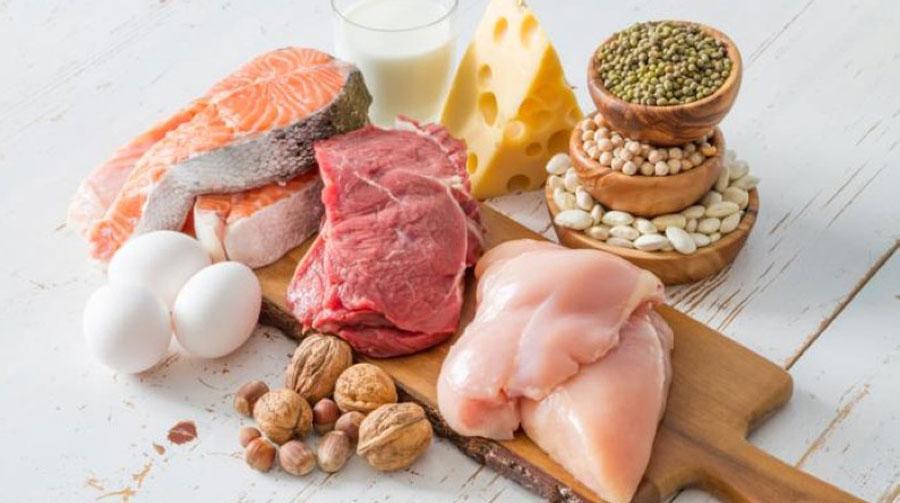 hvorfor er protein vigtigt for kroppen
