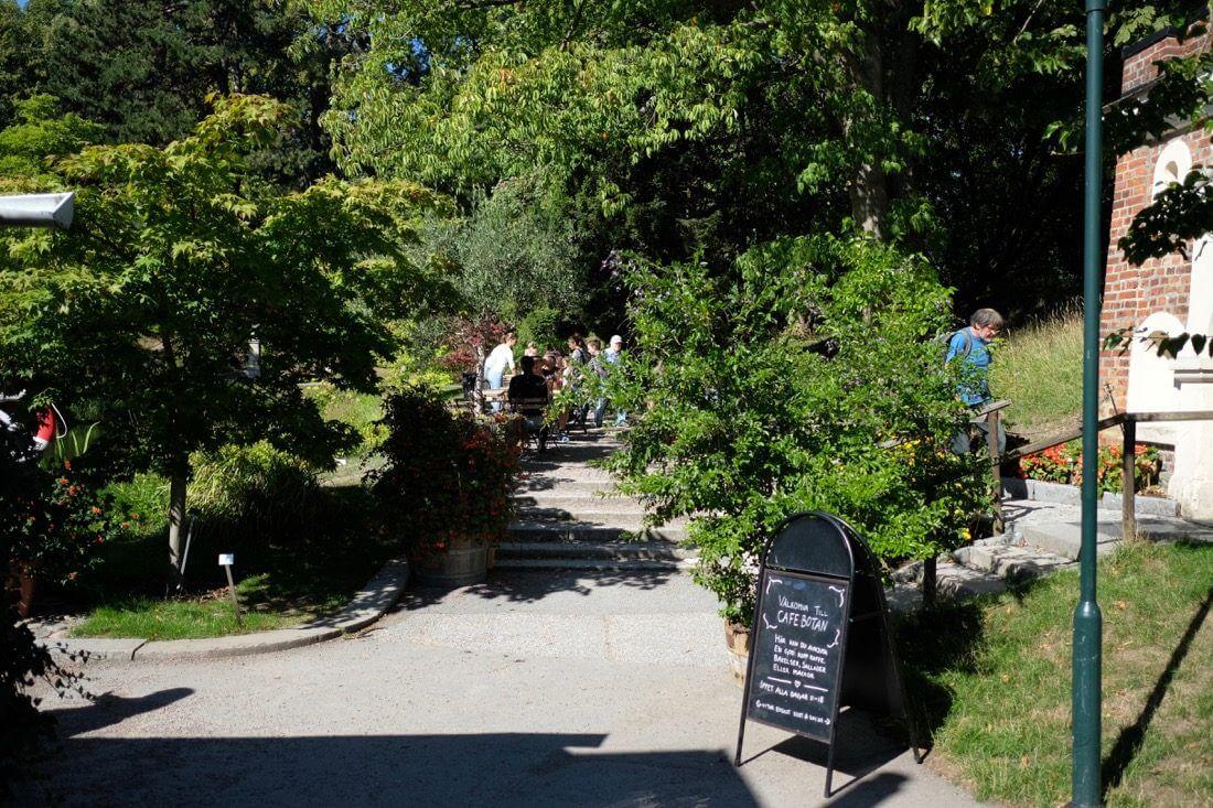 Botaniska trädgården ÖstraVallgatan20 - 3