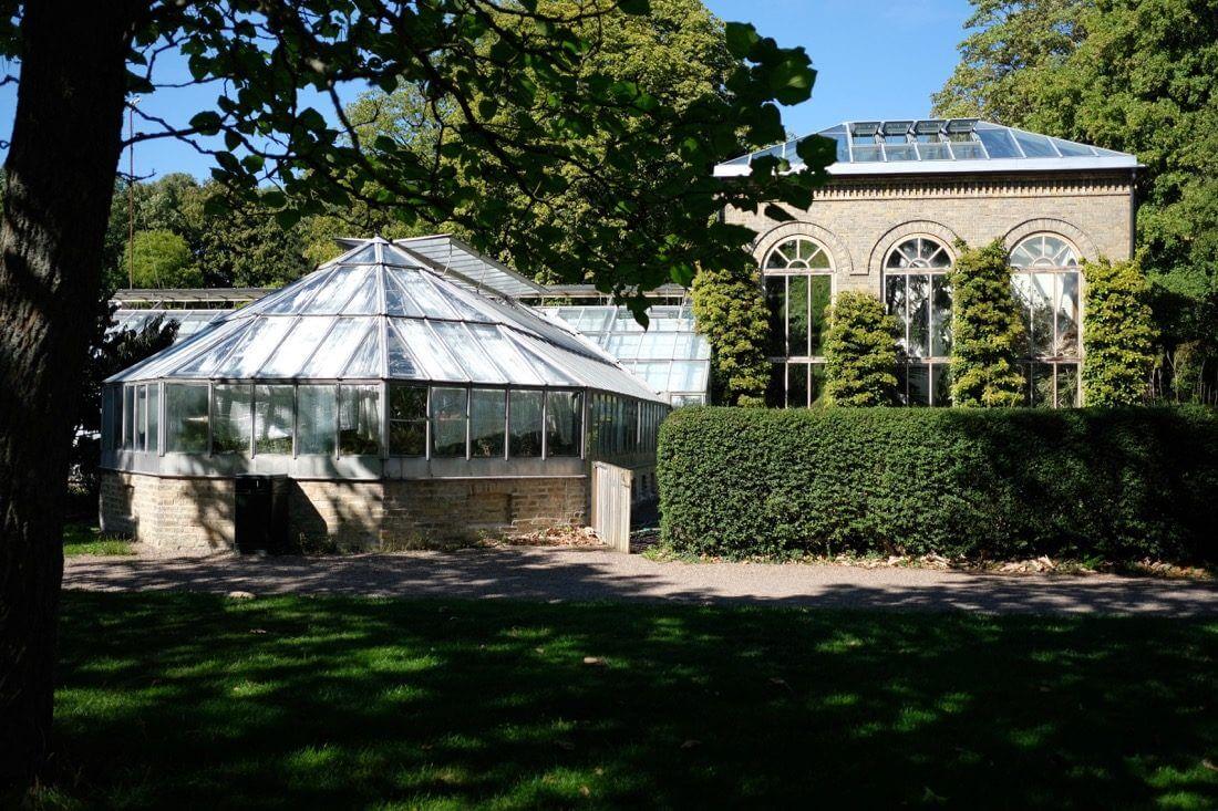 Botaniska trädgården ÖstraVallgatan20 - 4