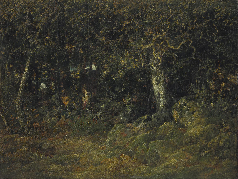 Théodore Rousseau - Le chêne de roche / klippeegnen