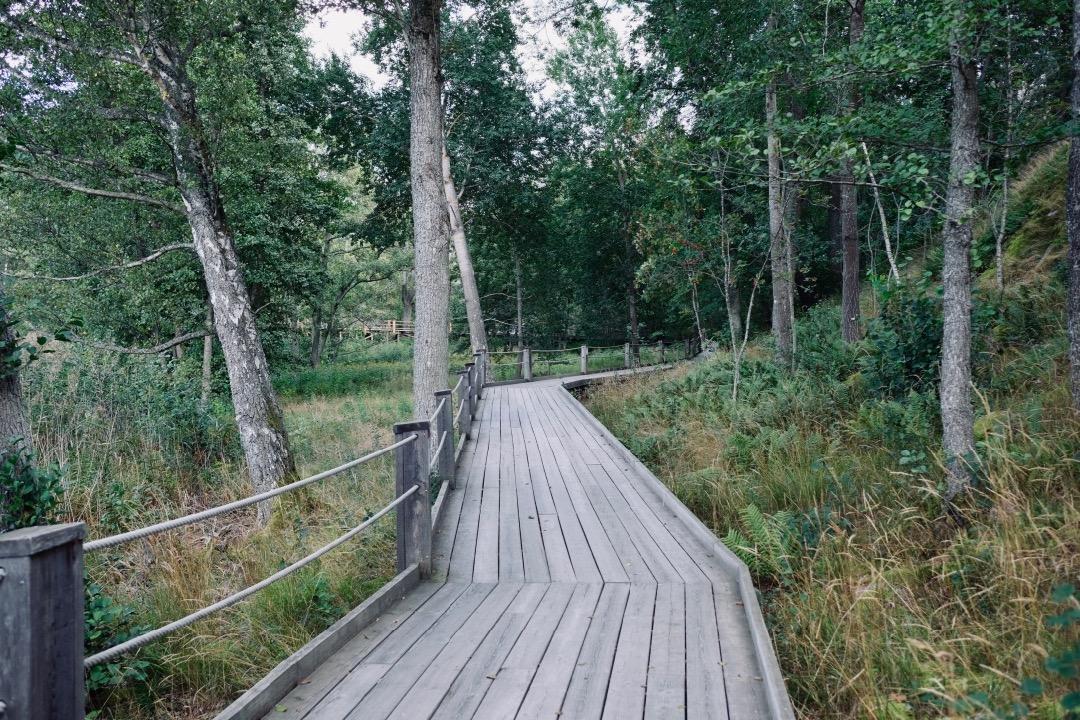 Artepilag - Stockholms Louisiana - Kulturformidleren 5