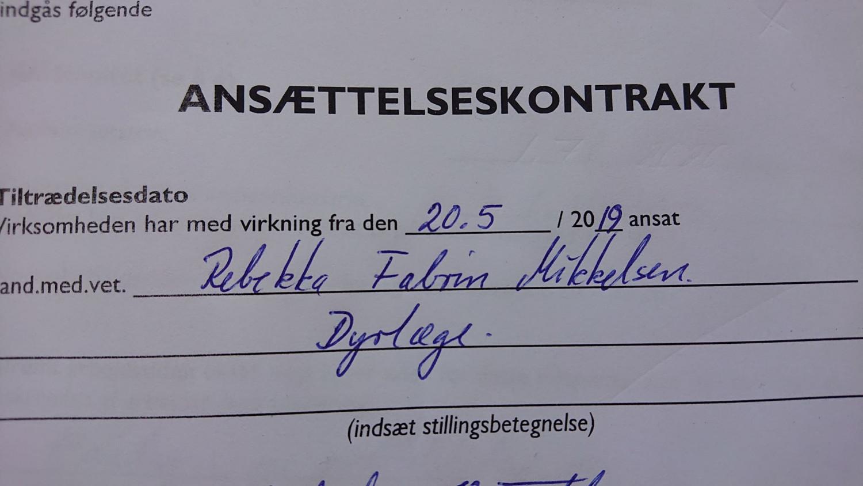Dyrlæge Rebekka Mikkelsen aka Madbloggeren Beksemad har fået nyt job og er ikke længere arbejdsløs