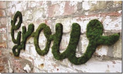Grow mosgraffiti