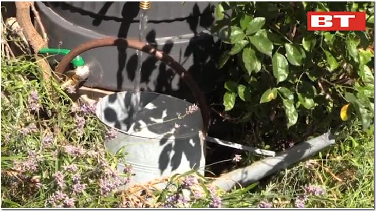 Kvistens haveskole opsaml dit regnvand Dorthe Kvist Meltdesignstudio a