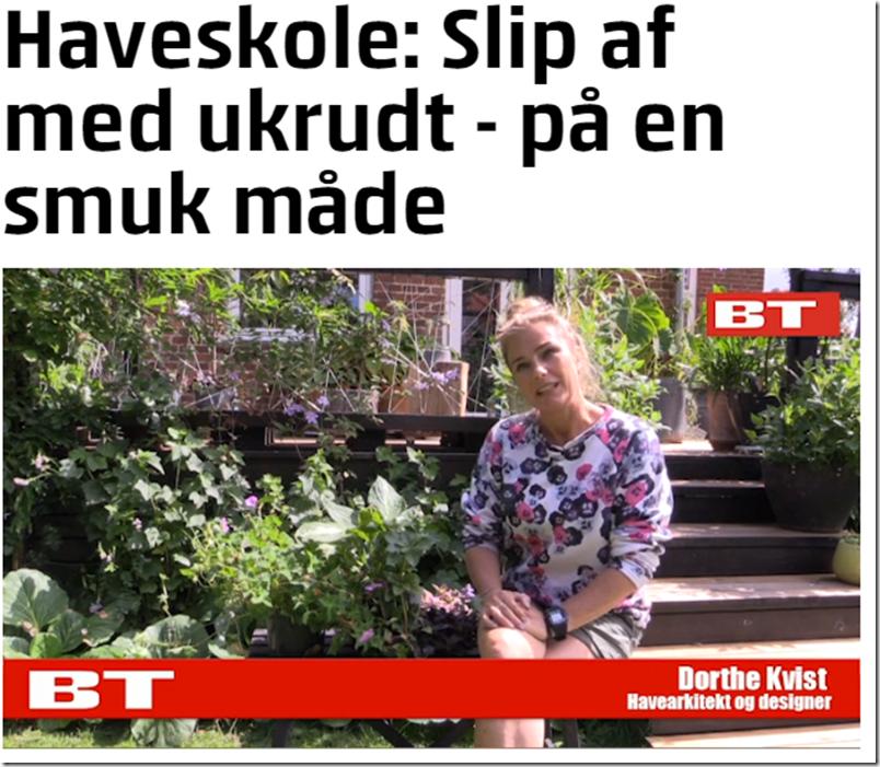 Kvistens haveskole Slip af med ukrudtet på en smuk måde Dorthe Kvist Meltdesignstudio b