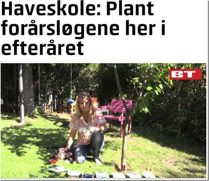 Kvistens haveskole læg forårsløgene om efteråret Dorthe Kvist Meltdesignstudio