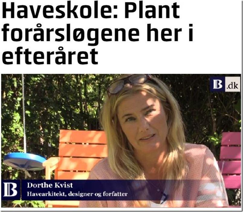 Kvistens haveskole Plant forårsløgene i efteråret Dorthe Kvist Meltdesignstudio 1