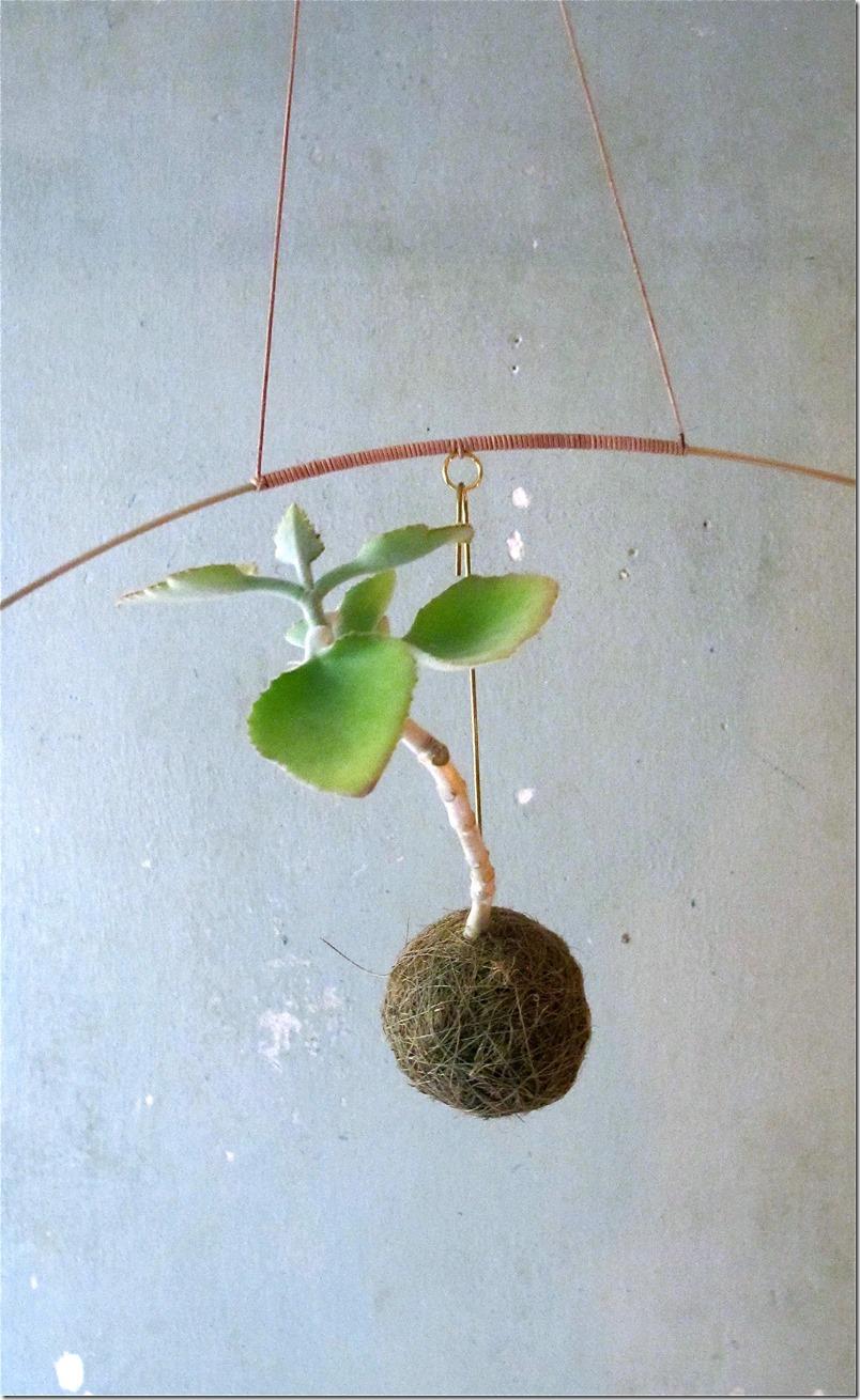 Planteplaneter Kaja Sofie Skytte Dorthe Kvist Meltdesignstudio (3)