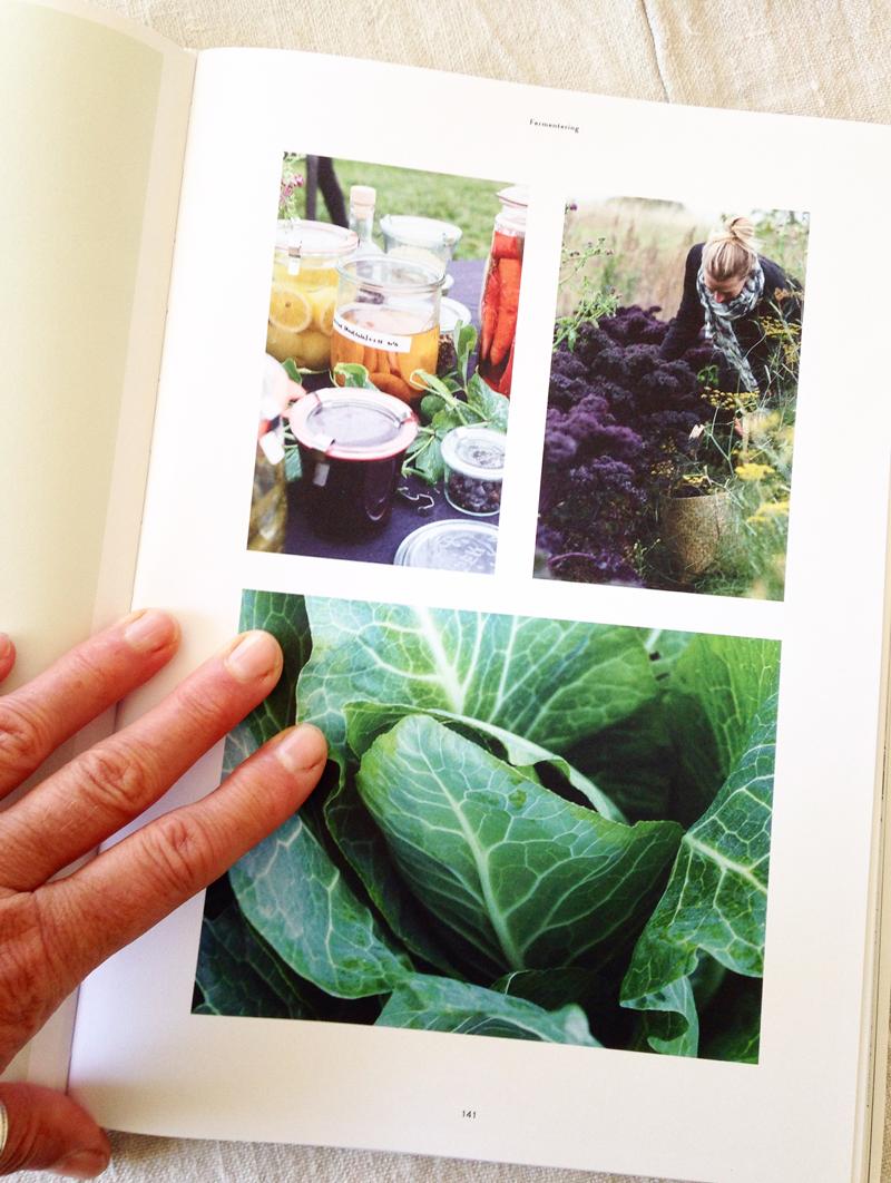 Melt læser Dyrk din by Foto Dorthe Kvist Meltdesignstudio (12)