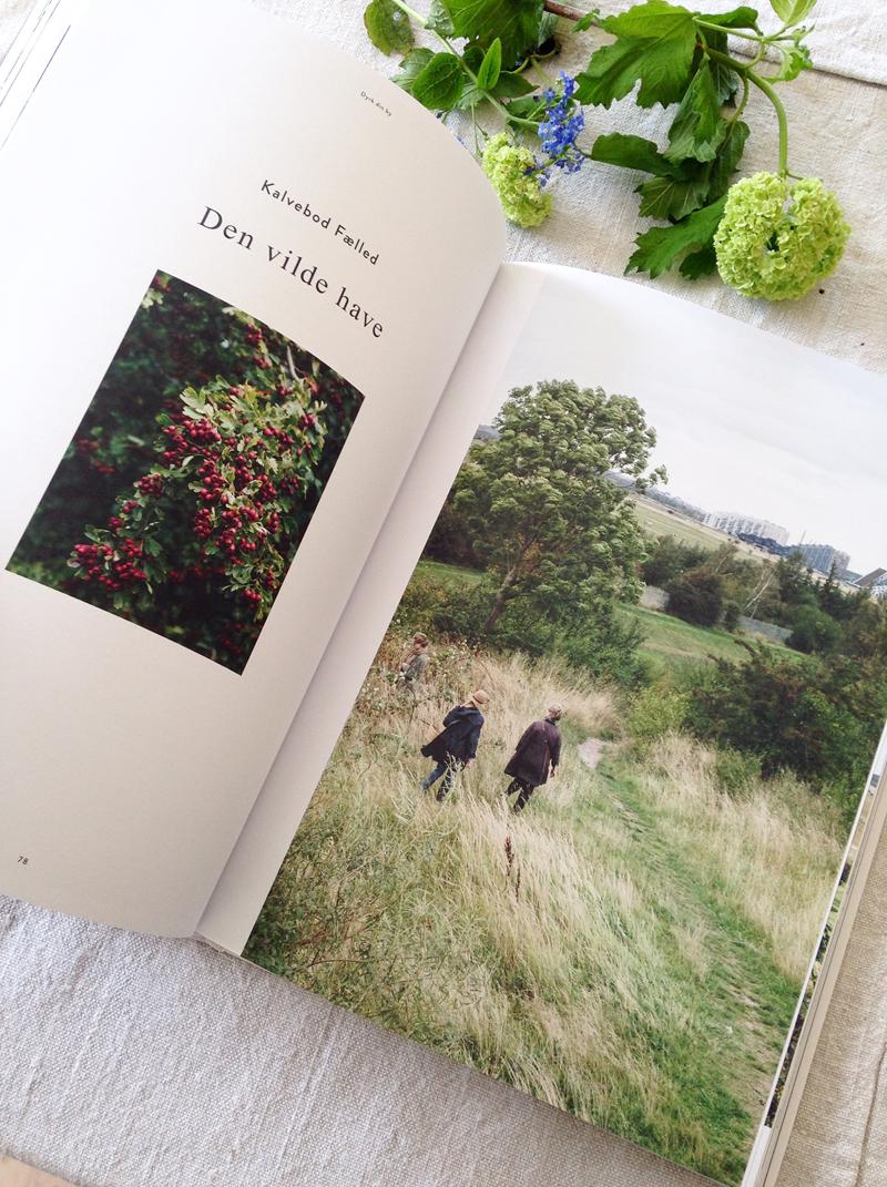 Melt læser Dyrk din by Foto Dorthe Kvist Meltdesignstudio (14)