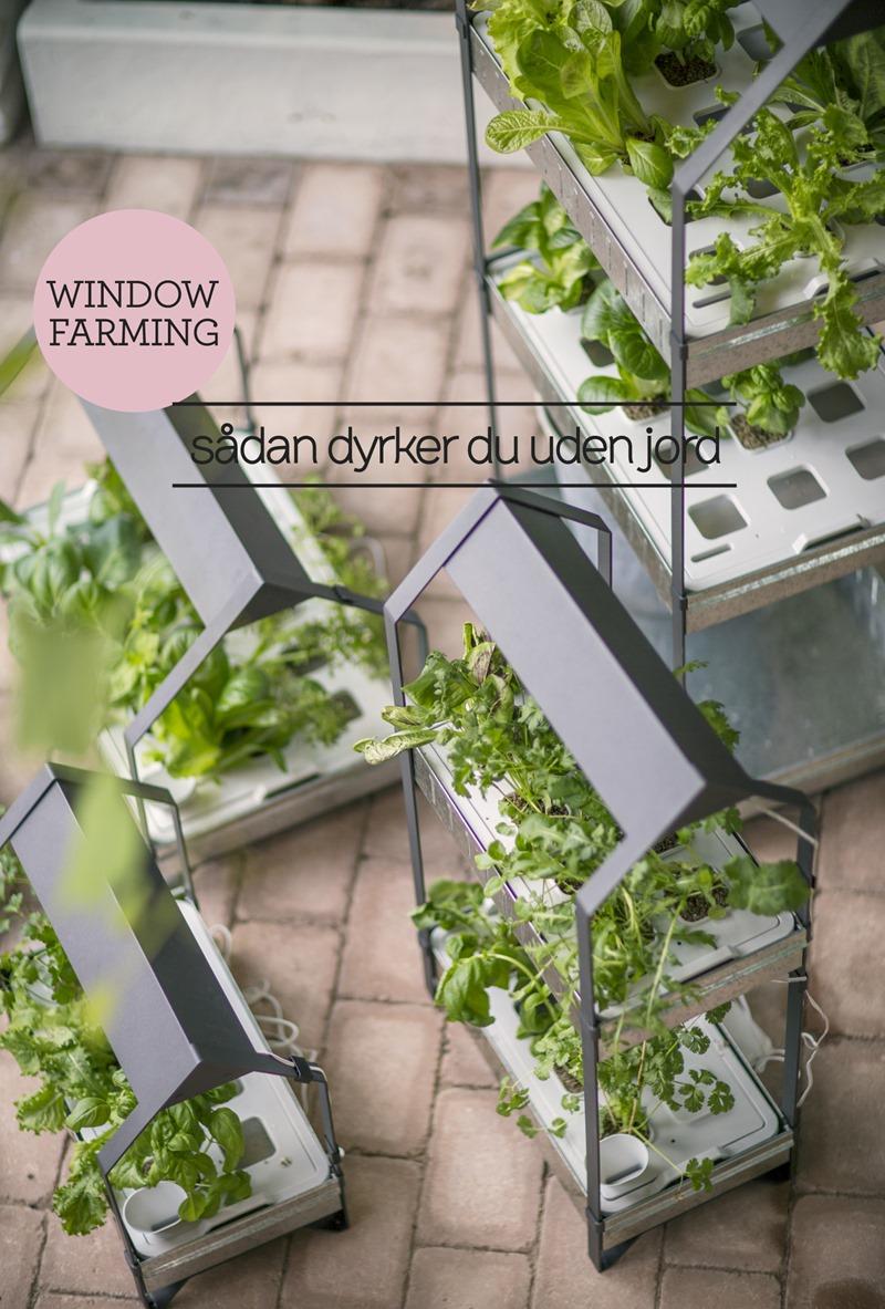 Window gardening sådan dyrker du uden jord  IKEA Dorthe Kvist Meltdesignstudio a