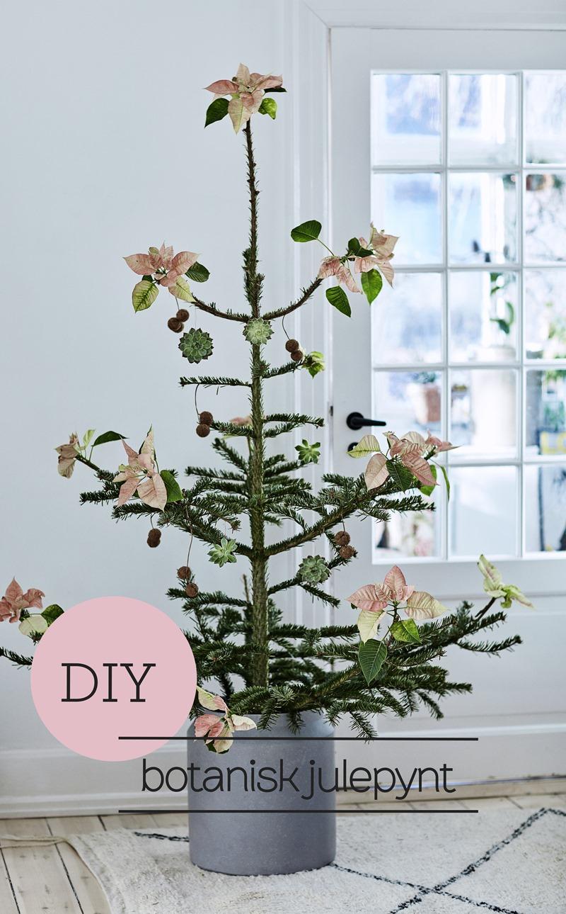 Botanisk julepynt Foto Martin Sølyst Styling Dorthe Kvist Meltdesignstudio a