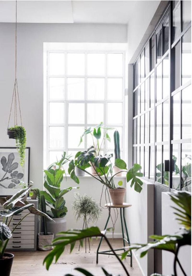 Greenify 3 tips til et grønnere 2017 Dorthe Kvist Meltdesignstudio
