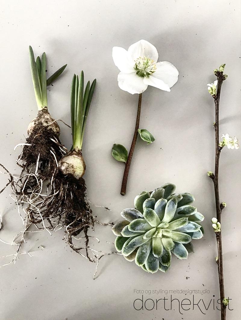 DIY Forår på et fad Foto og styling Dorthe Kvist Meltdesignstudio