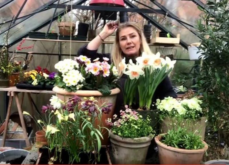 Havetips Sådan laver du de skønneste forårskrukker Dorthe Kvist Meltdesignstudio 3