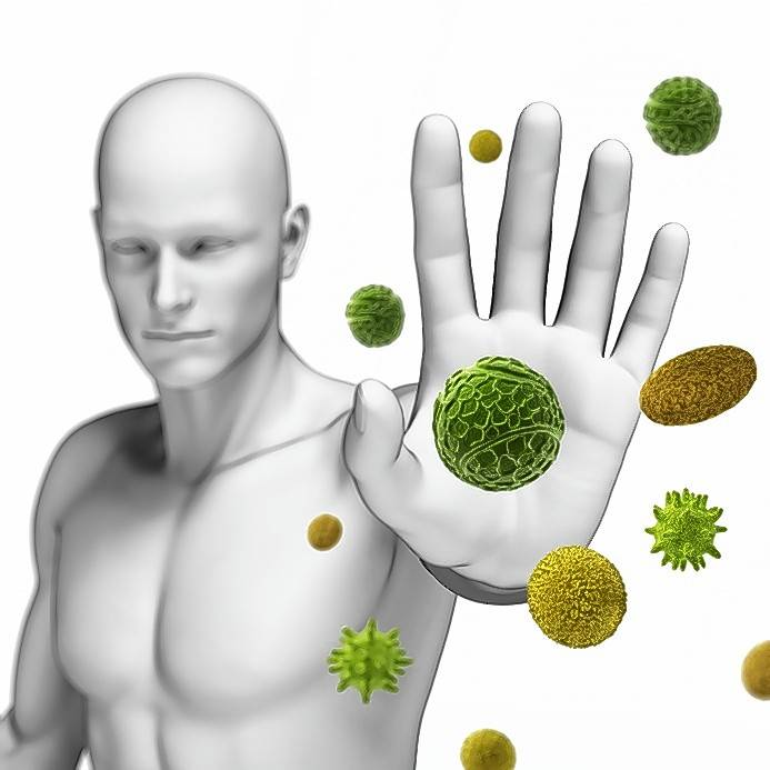 Billedresultat for how to boost your immune system