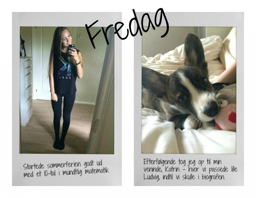 ff1PicMonkey Collage