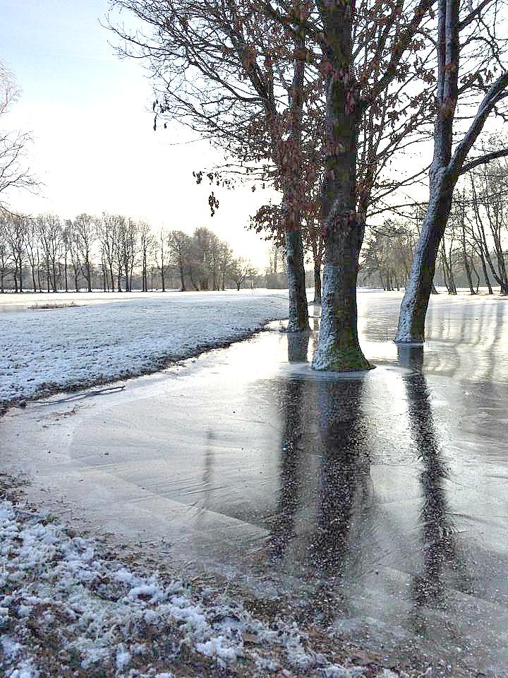 winterwonderland6