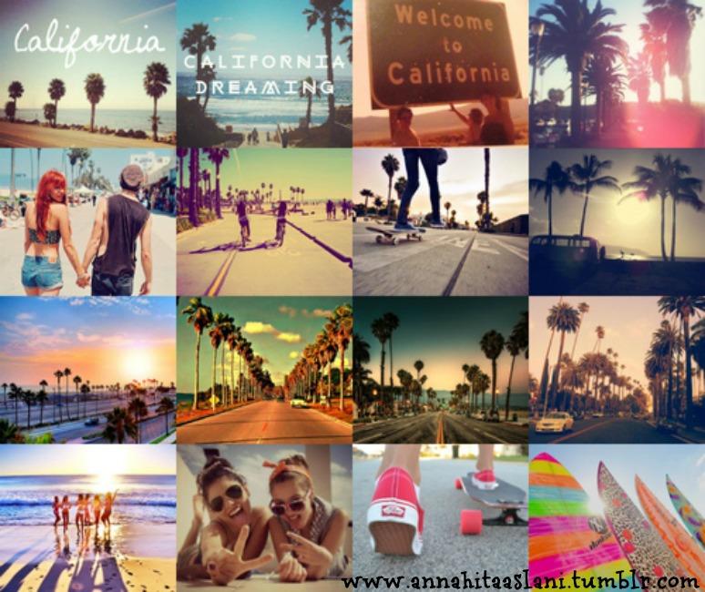 california_collage-6511
