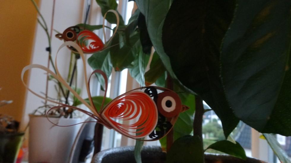 To af mine quilling fugle, som hænger fint i mit citrontræ og pynter.