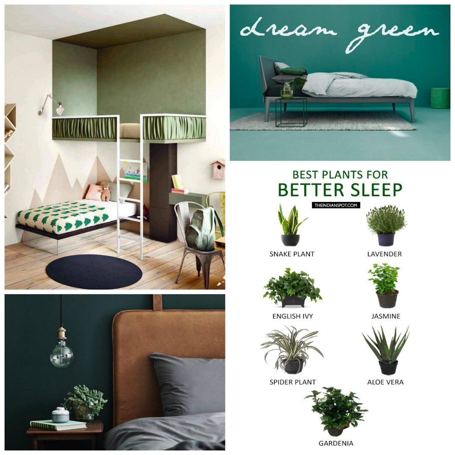 dream-green