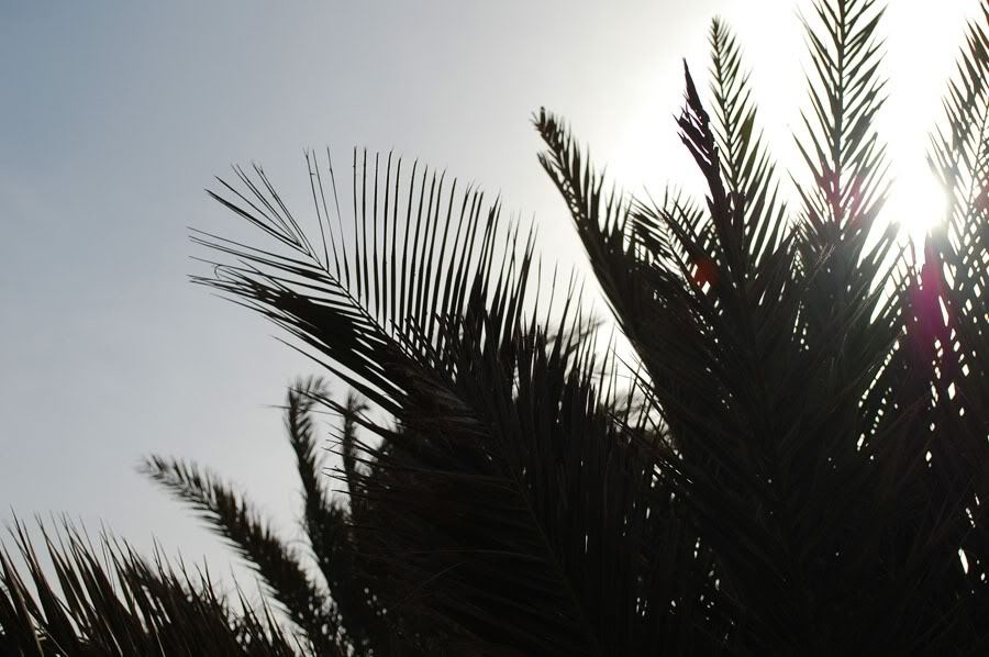 Kap Verde Dag 1