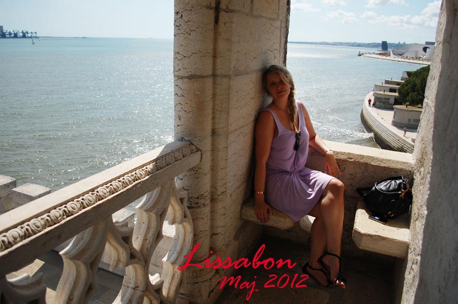 Året 2012 i rejser