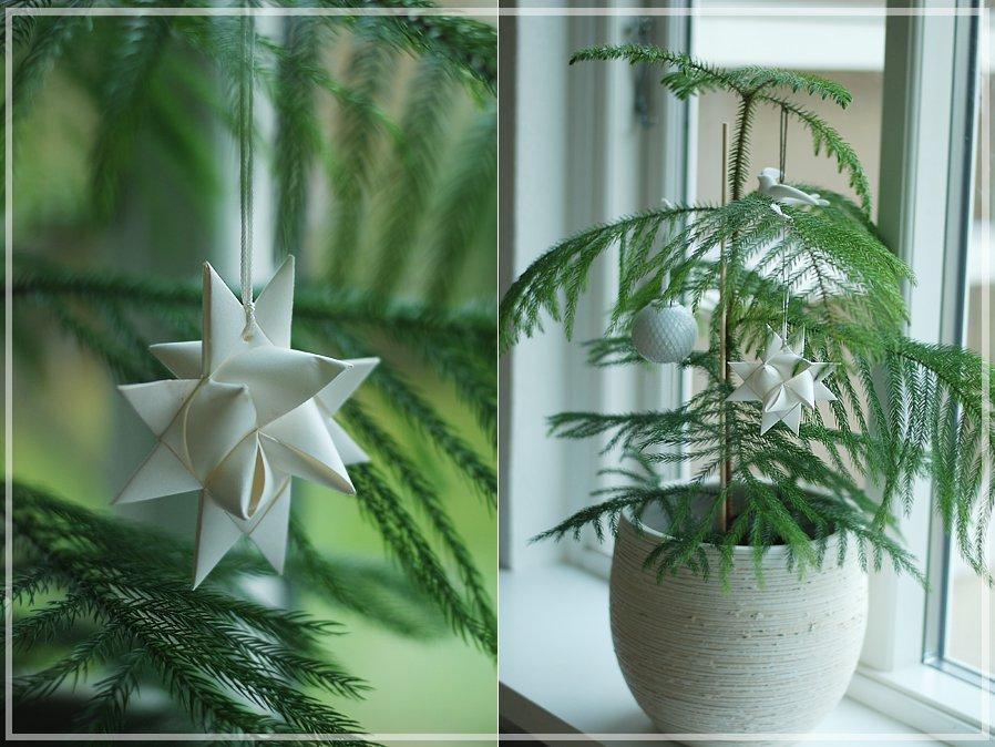 Stuegran som juletræ
