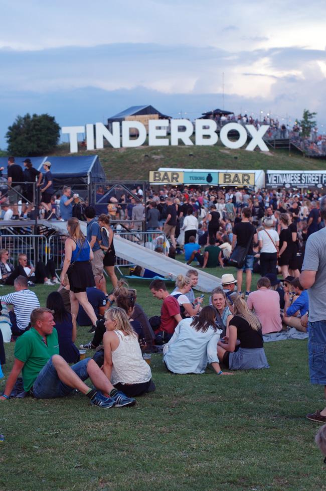 photo tinderbox-2016-16-tb16-festival-missjeanett-bakken-udsigt-dag-2-morblogger-aften-vejr-koncerter-program_zpsobhevf2c.jpg