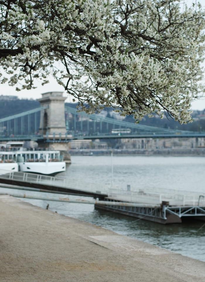 budapest-i-forar-in-spring-march-flod-donau-broer-bridges-city-guide-missjeanett-blogger-jeanett-drevsfeldt-ungarn-hungary