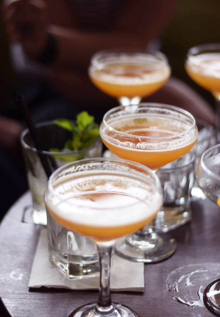 bloggerbar-rabarber-margaritas-rhubarb-margarita-missjeanett-min-weekend-odense-odensebloggers-privaten-cocktailbar-drinks-opskrift