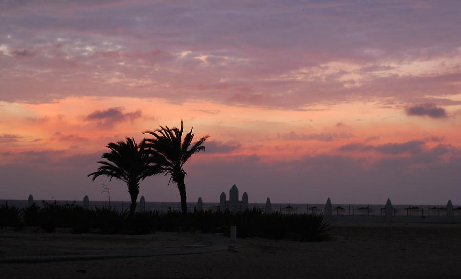 boavista-boa-vista-kap-verde-cape-cabo-sunset-solnedgang-palmer-hvad-skal-man-se-paa-miss-jeanett-blogger-palm-trees