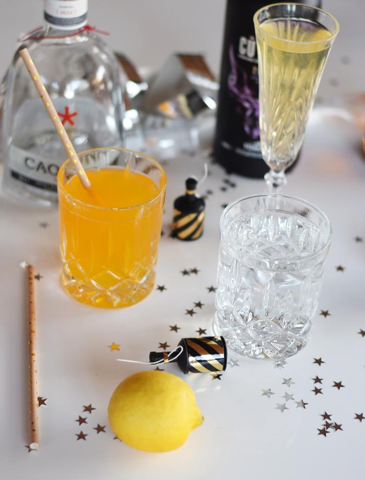 nytaars-cocktails-drinks-sjusser-nytaarsaften-gin-tonic-gt-missjeanett