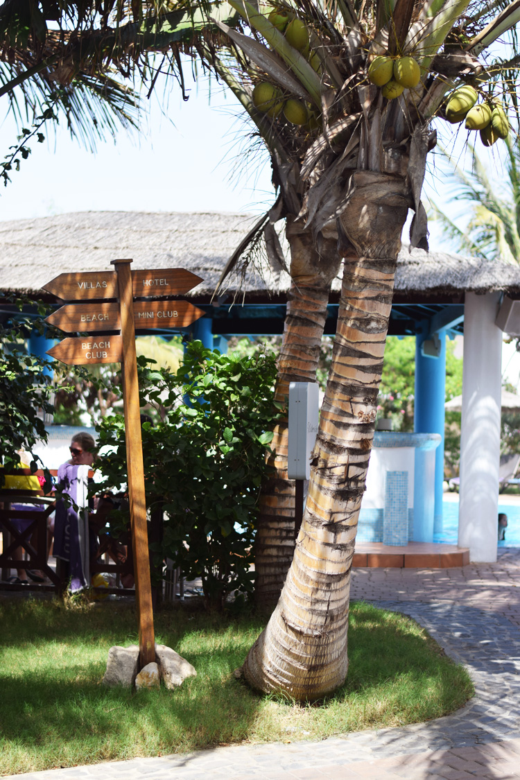 kap-verde-sal-santa-maria-melia-tortuga-beach-hotel-spies-rejser-villas-mini-club-klub-huse-missjeanett