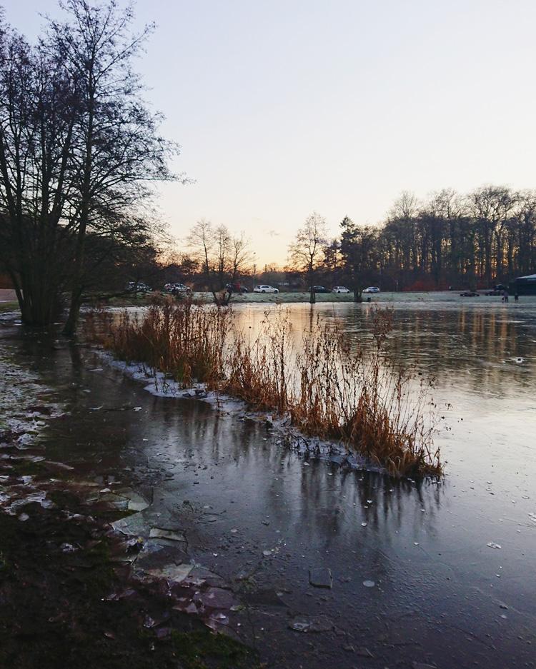 skovsoeen-odense-vinter-frossen-missjeanett-blogger-odenseansk-vinter-2018