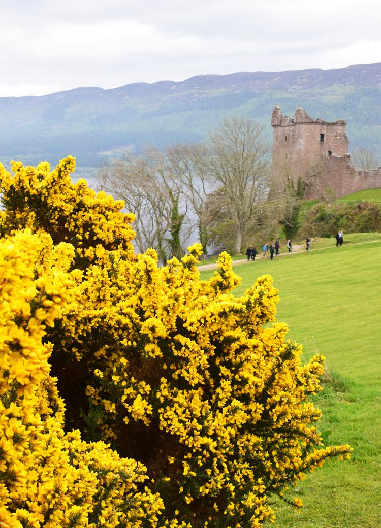 urquhart-castle-slot-scotland-skotland-loch-ness-missjeanett