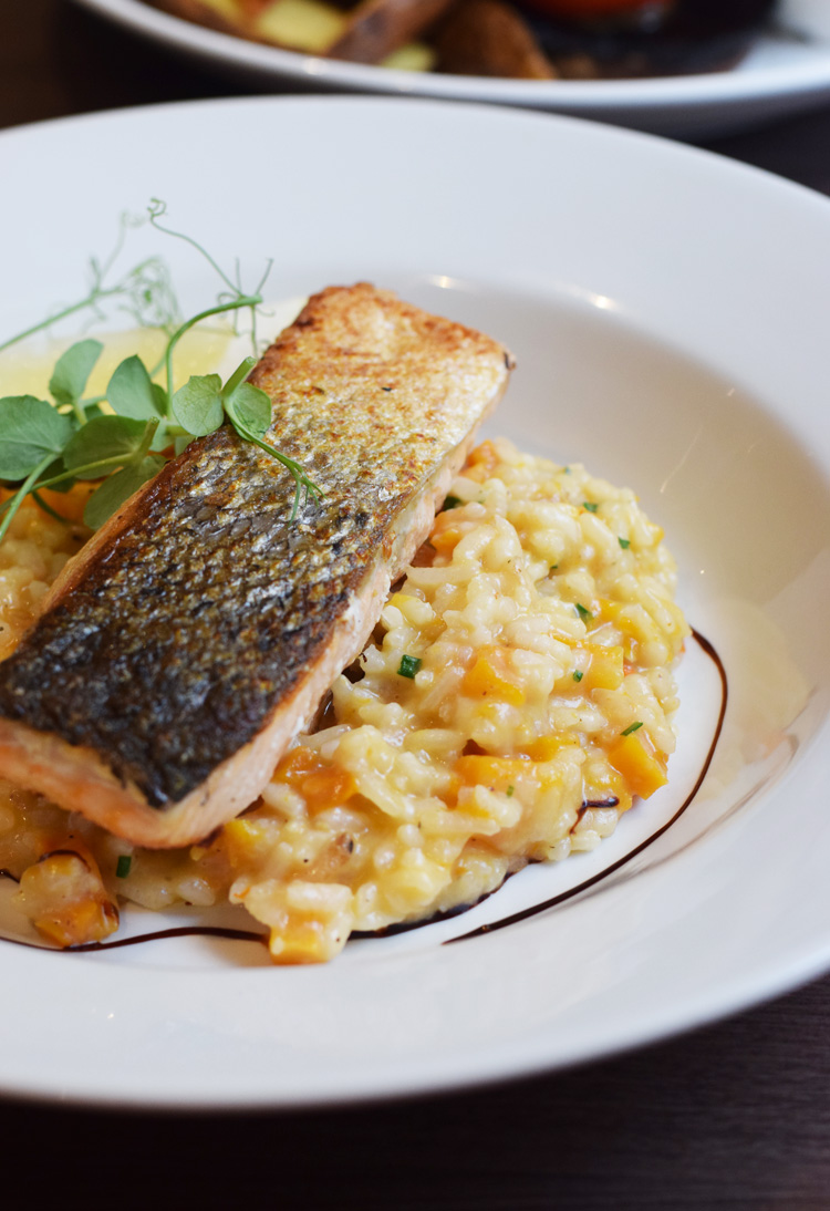 Scottish food - salmon risotto