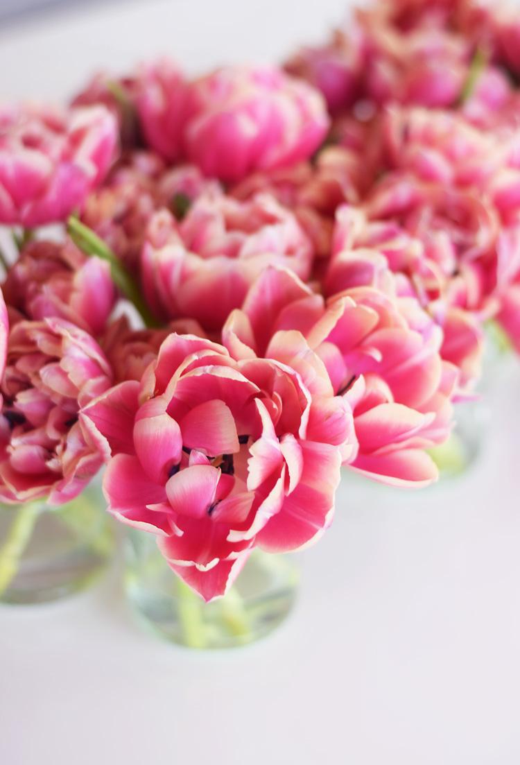 Lyserøde tulipaner - pink tulips - påske 2018