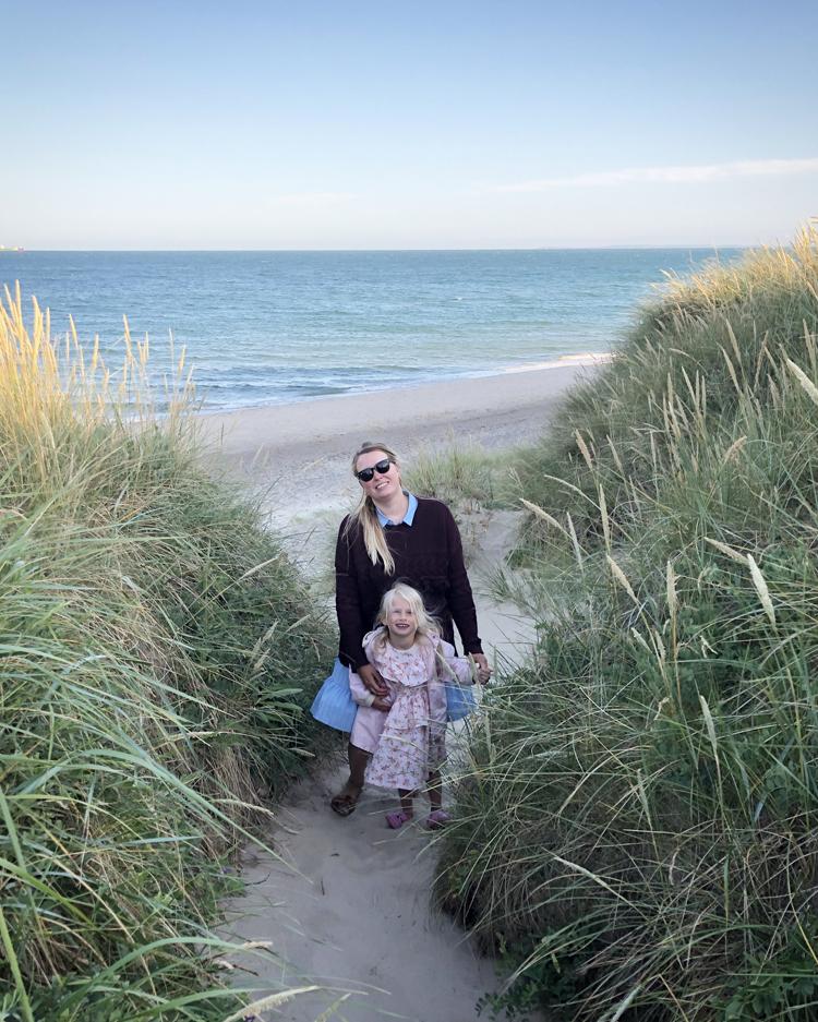 Skagen Skagensmalerne Damstederne strand