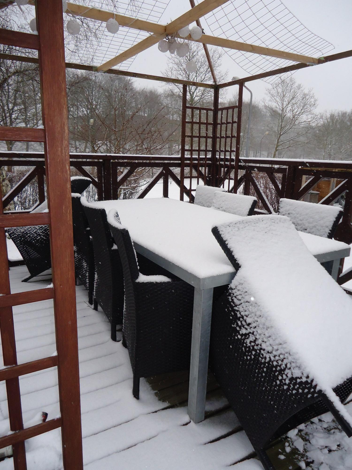 Den første sne der faldt i 2016