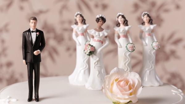 come_siamo_diventati_monogami_5506