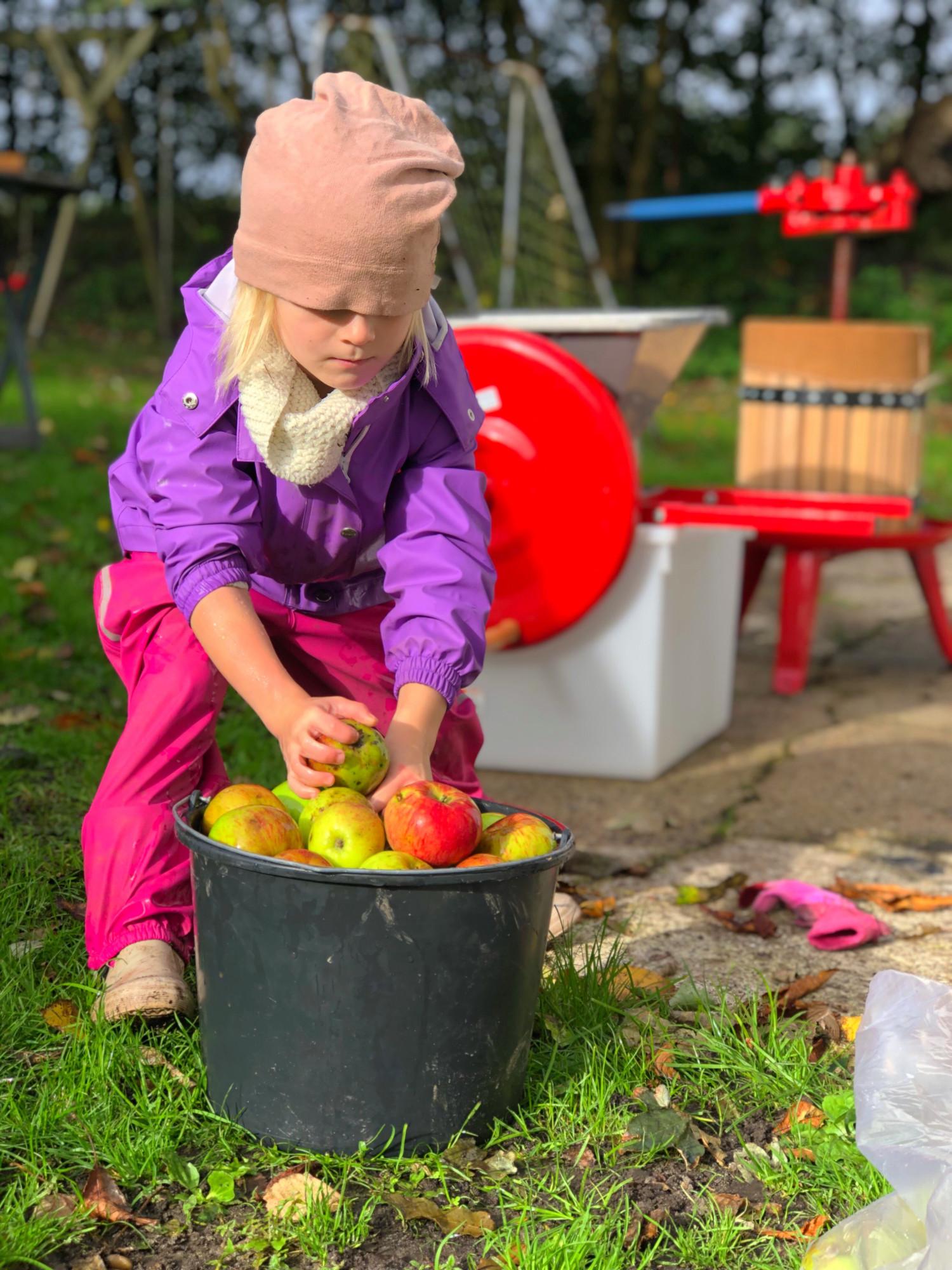 Æblemost opskrift