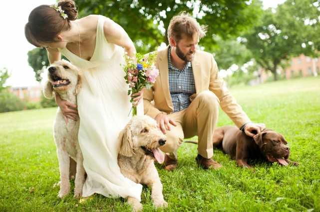 chien-de-compagnie-dans-mariage