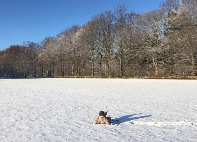 sne9image4