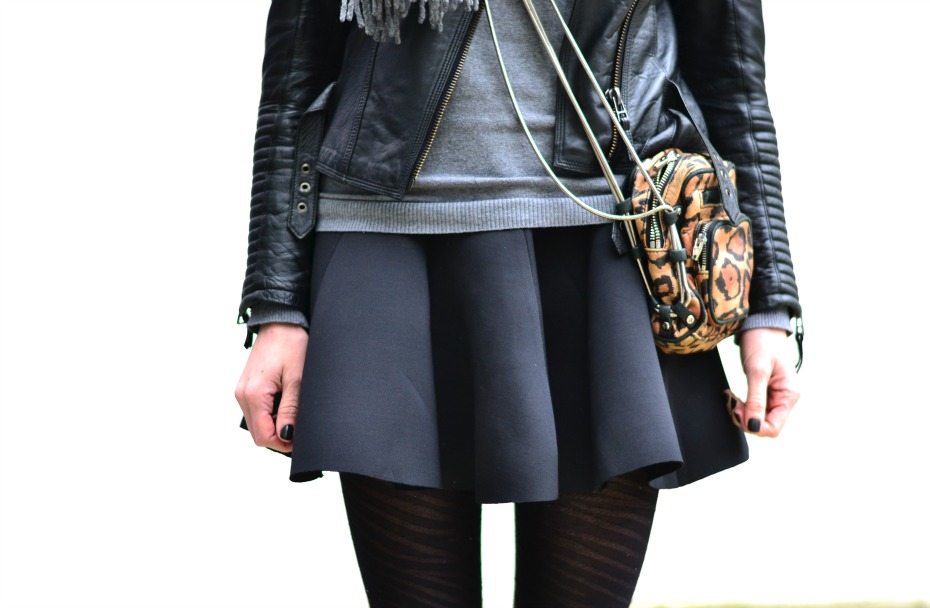 zara leather jacket_chicy skirt_alexander wang1
