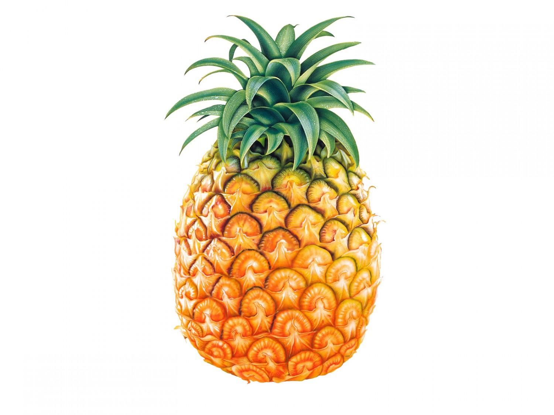 pineapple-04